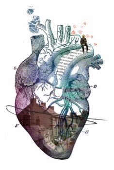 Heart, art, anatomy, medicine,physiology